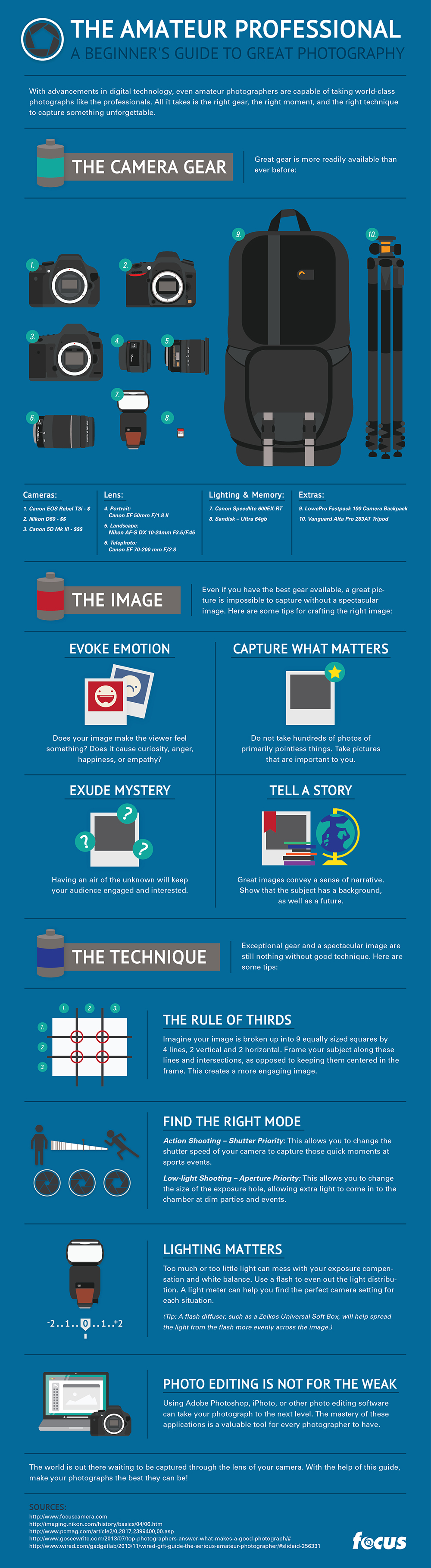 The Amateur Professional Infographic